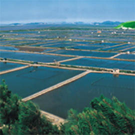 水产养殖监测物联卡_流量卡